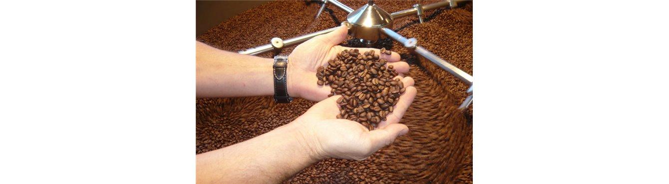 Kaffee gemahlen und ganze Kaffebohnen online kaufen bei Condito